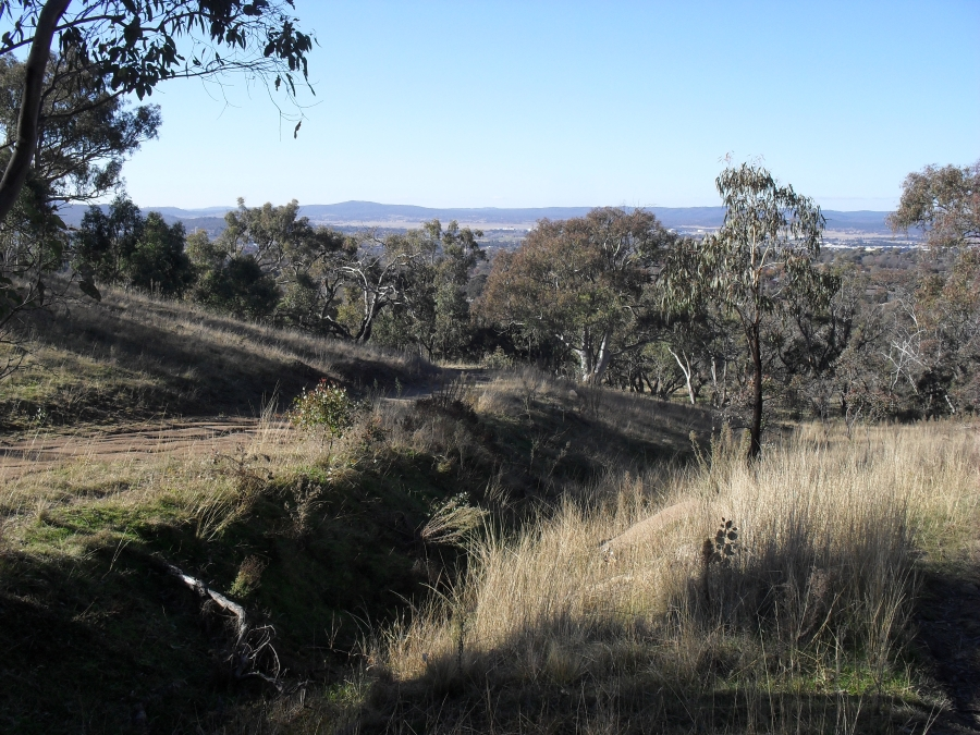 Gandalf Trail